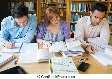 Adult students studying together in