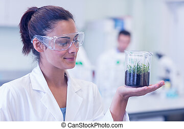 Female scientist analyzing a young plant at lab