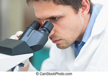 Scientific researcher using microscope in the laboratory -...