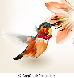 Beautiful vector realistic humming bird with lily - Vector...