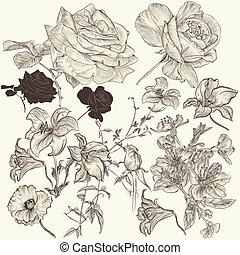 Collection of hand drawn detailed flowers for design -...