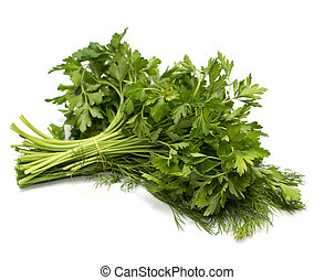 parsley and dill on a white background. macro