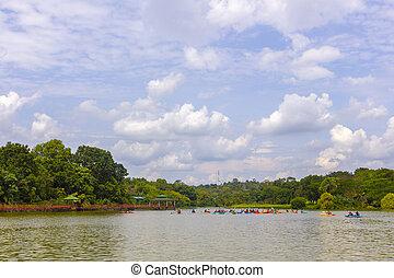 group of kayaking