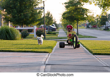 Walking the Dog with Tricycle in the Neighborhood - Young...
