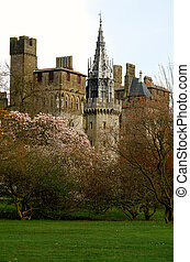 Bute park whit castle in the background, Cardiff, Wales UK
