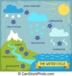 The water cycle. Poster with nature infographics in flat...