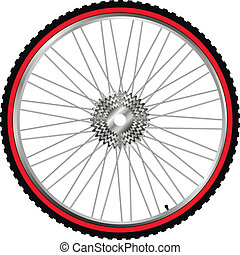 Bicycle wheel, vector - Bike wheel isolated on white...