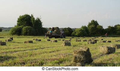 farmer load hay bale - farmers peasants carry load dried hay...