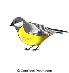 A cute titmouse isolated on a white background. Vector-art...