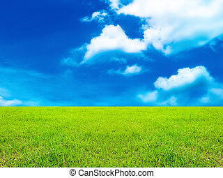 fresh green grass with cloud sky and background