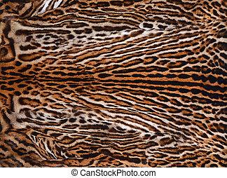 Leopardo, Plano de fondo, piel