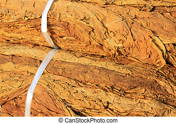 closeup of photo, dry tobacco leaves in the market - closeup...