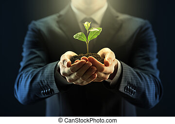 New Development - Businessman with seedling in his hands