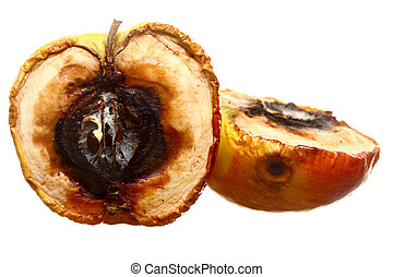 Rotten apple halves isolated. Food waste. - Rotten apple...