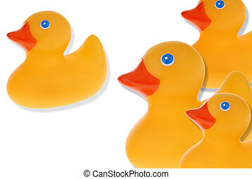 Group of yellow rubber ducks isolated over a white...