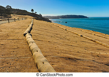 Walking trail next to ocean with erosion control mesh -...