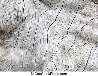 Weathered natural wood texture background
