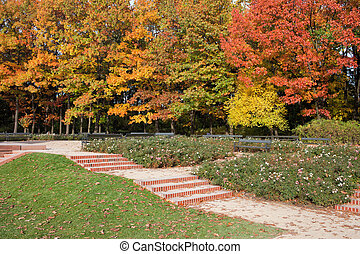 Autumn in the Royal Lazienki Park in Warsaw - Autumn in the...