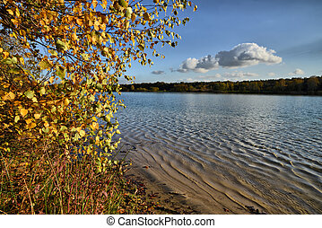 autumn at a lake background - Autumn at the lake in the...