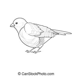 A monochrome sketch of titmouse. Vector-art illustration...