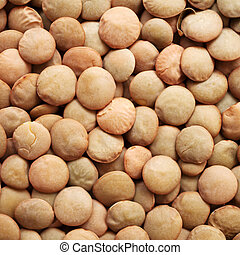 Lentils - background of brown dry  lentils