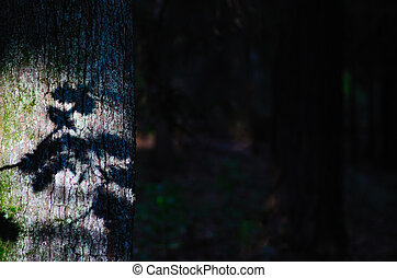 shadow of leaves on tree - shadow of leaves on a tree in the...