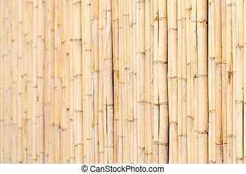 Wooden wall of bamboo close-up - Wooden yellow bamboo fence...