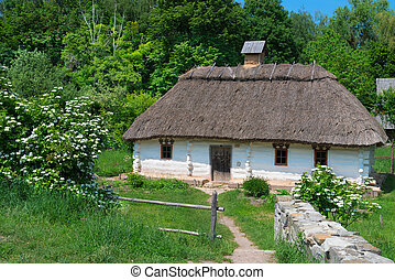 Typical village house in Ukrainian countryside with gardens...
