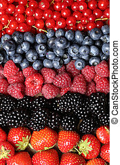 Fresh fruits in a row - Fresh fruits like strawberries,...