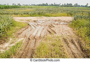 spåra, land,  off-road, lantgård