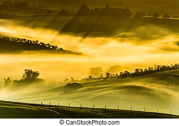 Foggy meadows in the morning, Tuscany