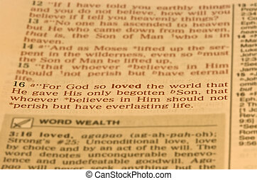 Bible Scripture John 3:16 isolated with blurred background