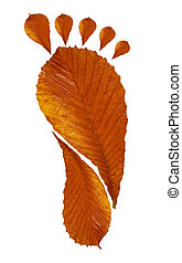 Foot Print from leaves on a white background
