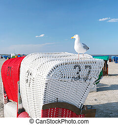 Beach chairs with seagull