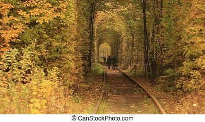 Railway tunnel covered with autumn leaves