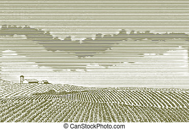 Farm Field Drawing - Pen and ink drawing of a farm field...