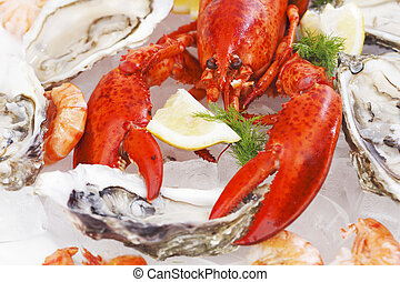 Fresh seafood - Various fresh seafood on white background