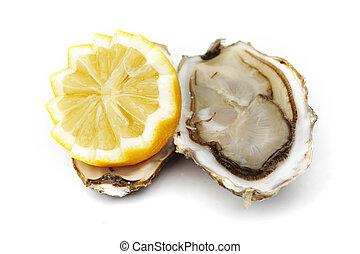 ostra, limão, branca