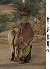 Woman with cow carrying manure