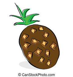 coconut clip-art on White background
