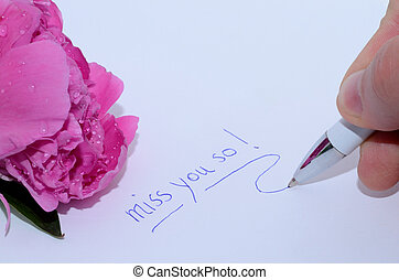 miss you so writing on white background with pink rose