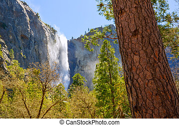 Yosemite Bridalveil fall waterfall California - Yosemite...