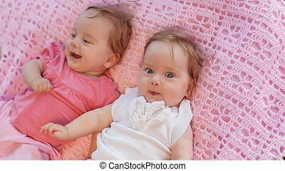 doce, pequeno, gêmeos, mentindo, Cor-de-rosa,...
