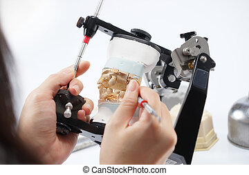 Dental technician working with articulator in dental...