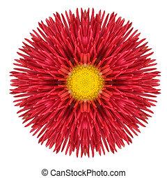 Red Daisy Mandala Flower Kaleidoscopic Isolated on White