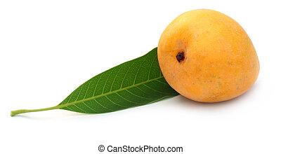 Fresh Mango with green leaf