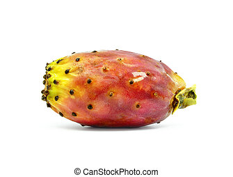 prickly pear on a white background