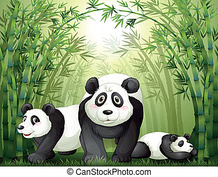 Three big bears at the rainforest - Illustration of the...