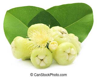 maçã,  rosÈ, folhas, água, verde, fresco, ou