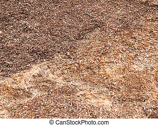 Wood chips - Close up on textured organic wood chips